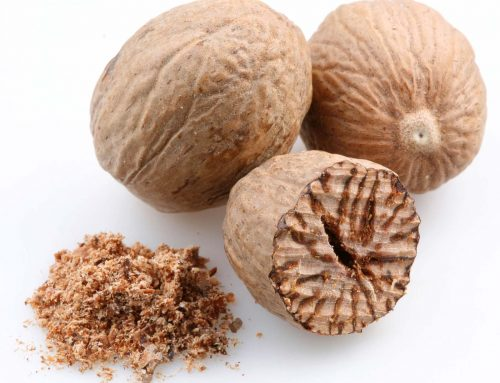 Spice of the month: Nutmeg